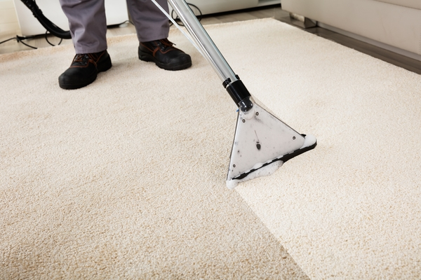 Carpet Cleaning Company : the Benefits