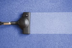 vacuum cleaner for carpet cleaning LAKELAND FL
